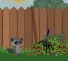 Raccoons Adventure